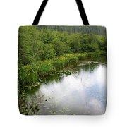 Raindrops On The Little Spokane Tote Bag