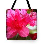 Raindrops Red Azaleas Art Prints Water Drops Azalea Flowers Tote Bag