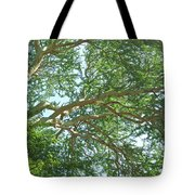 Rainforest Canopy Tote Bag
