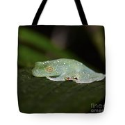 Rainforest Detail.. Tote Bag