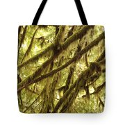 Rainforest Drama Tote Bag