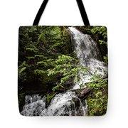 Rainforest Falls Tote Bag