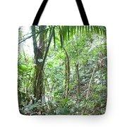 Rainforest Trees Tote Bag