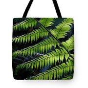 Rainforest Wonder Tote Bag