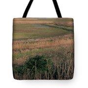 Rainham Marshes Tote Bag
