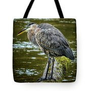 Rainy Day Heron Tote Bag by Belinda Greb