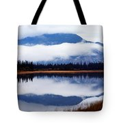 Rainy Day Reflections Tote Bag
