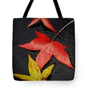 Rainy Day Trio Tote Bag