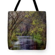 Rainy Feeder Day Tote Bag