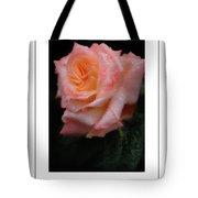 Rainy Rose In Macro Poster Tote Bag