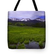 Rainy Season Tote Bag by Barbara Schultheis
