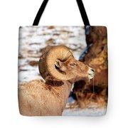 Ram Drool Tote Bag