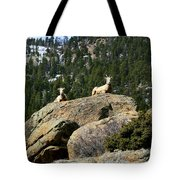 Ram On The Watch Tote Bag