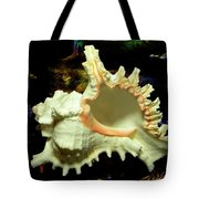 Rams Horn Seashell Tote Bag
