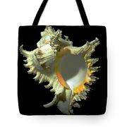 Rams Horn Seashell Murex Ramosus Tote Bag