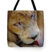 Ramses Tote Bag
