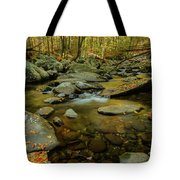 Ramsey Cascades Trailhead Tote Bag