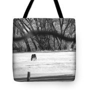 Ranch Horse In The Fields Tote Bag