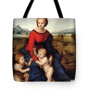 Raphael Madonna Of Belvedere  Madonna Del Prato  Tote Bag