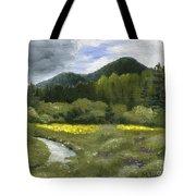 Rapid Creek Tote Bag