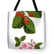 Raspberries And Raspberry Blossoms Tote Bag