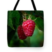 Raspberry 1 Tote Bag