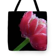 Raspberry Tulip Tote Bag by Tracy Hall