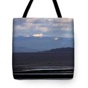 Rathtrevor Beach On Vancouver Island In British Columbia Tote Bag