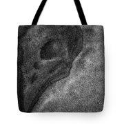 Raven Skull Tote Bag