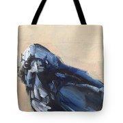 Raven Stare Tote Bag