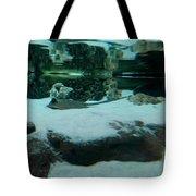 Ray Bay Tote Bag