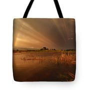 Nature's Light Show Tote Bag