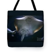 Ray Of Fun Tote Bag