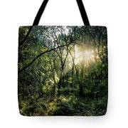 Ray Of Light Through Green Tote Bag