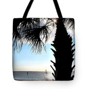 Raymonds Afternoon Sun Tote Bag