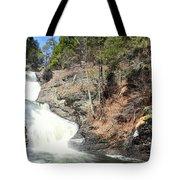 Raymondskill Falls Tote Bag