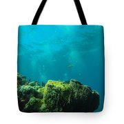 Rays Of Light Tote Bag