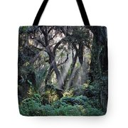Rays Of Sunlight Tote Bag