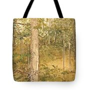 Raystown Lake Tote Bag by Leah  Tomaino