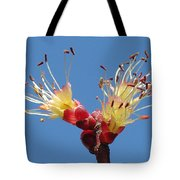 Re-awakening Tote Bag
