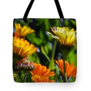 Reach For The Sun 1 Tote Bag