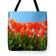 Reach For The Sun. Tote Bag