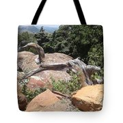 Reaching For Summits Tote Bag