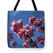 Reaching For The Blue Sky Tote Bag