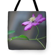Reaching For The Fence Tote Bag