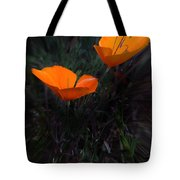 Reaching For The Sun Tote Bag