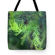 Reaching Out 2 Tote Bag