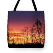 Reaching West Tote Bag