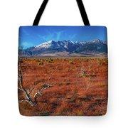 Read Fields Eastern Sierra Tote Bag
