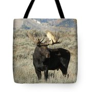 Ready And Waiting Tote Bag by Sandra Bronstein